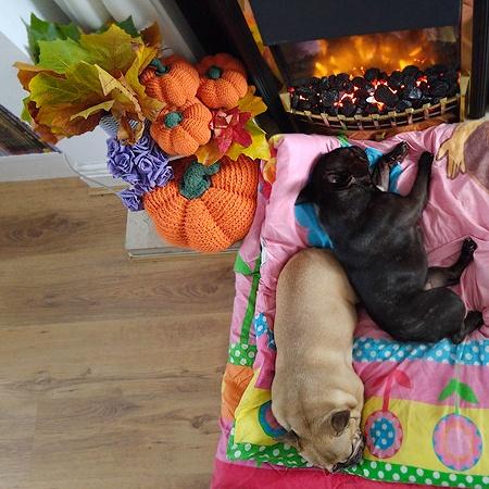 halloween crochet pumpkins